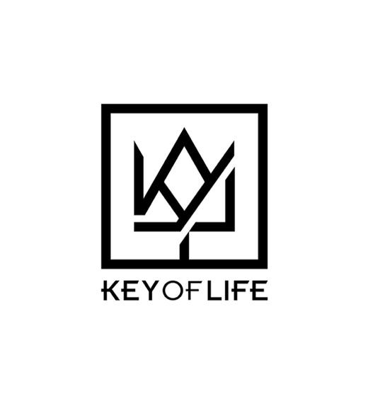 株式会社KEY OF LIFEロゴ3