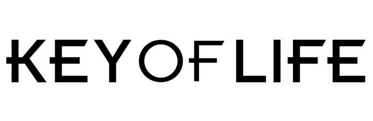 KEY OF LIFEロゴ文字のみ